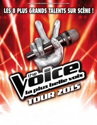 The Voice Tour 2015